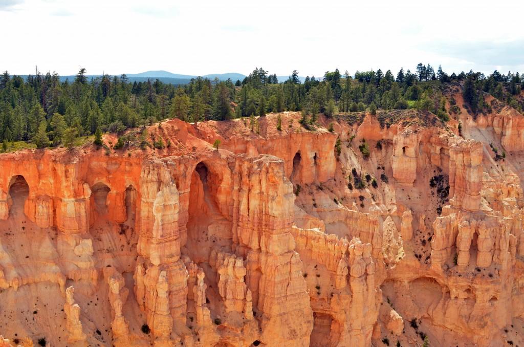 bryce canyon half 10